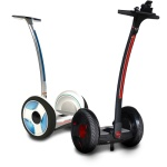 Ninebot/ SXT Scooters